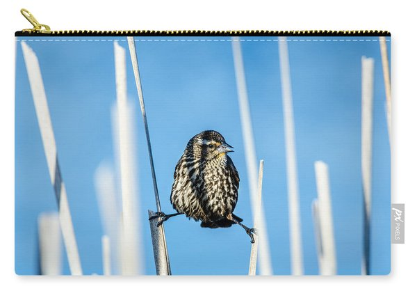 Nature's Circus Carry-all Pouch