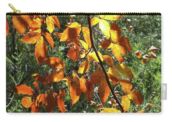 Nature's Finest 2 - Ricketts Glen Carry-all Pouch