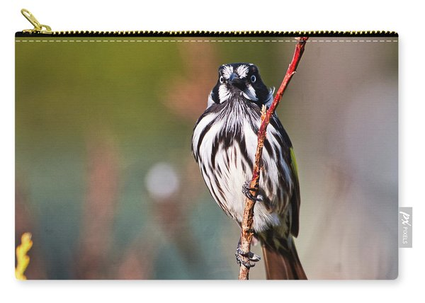 New Holland Honeyeater  Carry-all Pouch