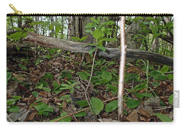 New Life In The Undergrowth Of The Forest Carry-all Pouch