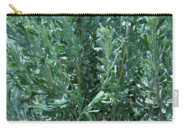 New Sage Carry-all Pouch