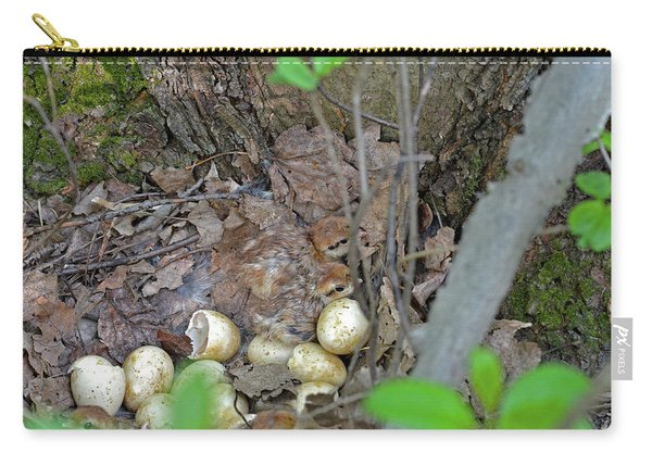 Newly Hatched Ruffed Grouse Chicks Carry-all Pouch
