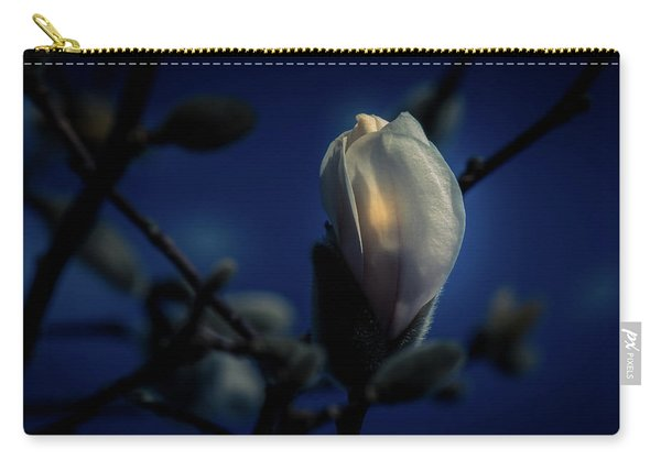 Carry-all Pouch featuring the photograph Night Lights by Allin Sorenson