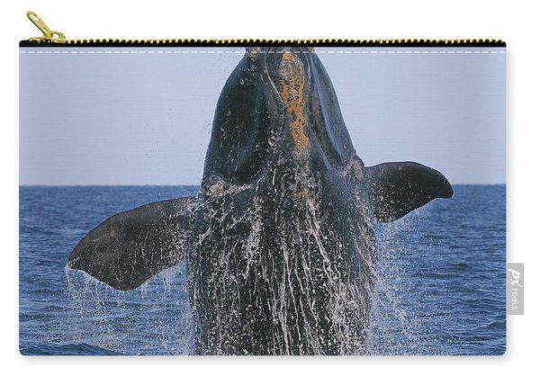 North Atlantic Right Whale Breaching Carry-all Pouch
