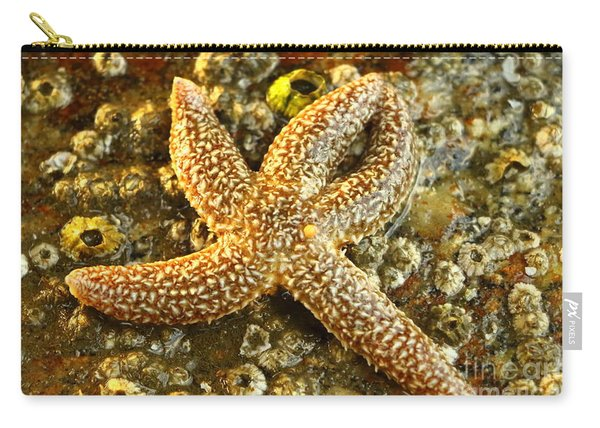North Atlantic Sea Star Carry-all Pouch
