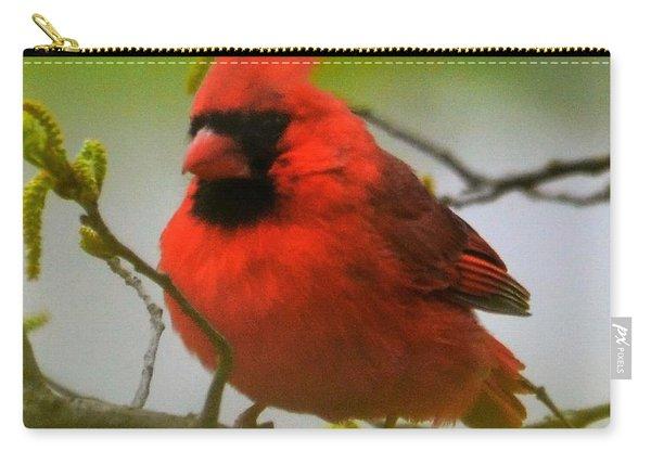 North Carolina Cardinal Carry-all Pouch