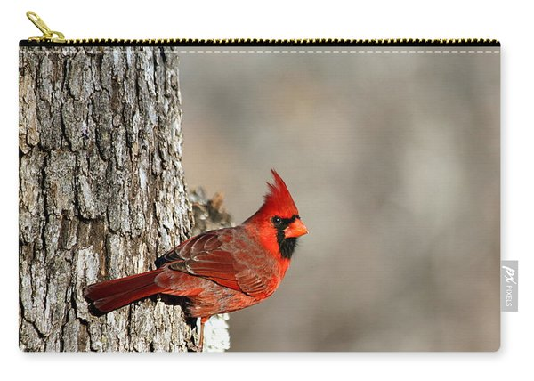 Northern Cardinal On Tree Carry-all Pouch
