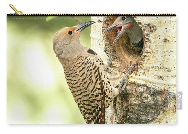 Northern Flicker Feeding Baby Carry-all Pouch