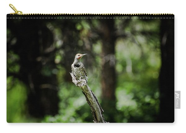 Carry-all Pouch featuring the photograph Northern Flicker by Jason Coward