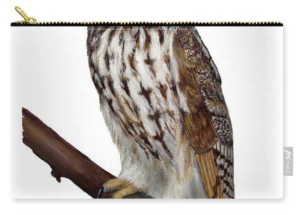 Northern Long-eared Owl Asio Otus - Hibou Moyen-duc - Buho Chico - Hornuggla - Nationalpark Eifel Carry-all Pouch