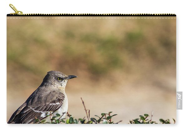 Northern Mockingbird Sitting On Top Of A Hedge Carry-all Pouch