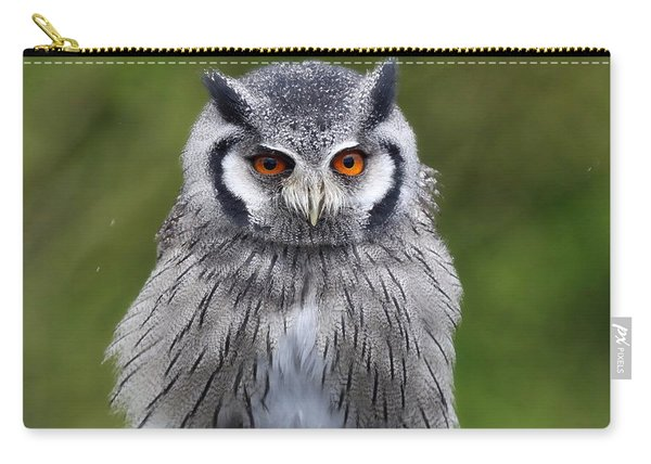 Northern White Faced Owl Carry-all Pouch
