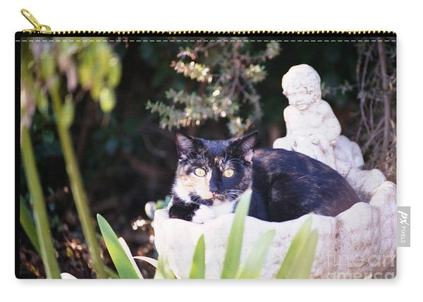 Carry-all Pouch featuring the photograph Not Just For The Birds by Cynthia Marcopulos