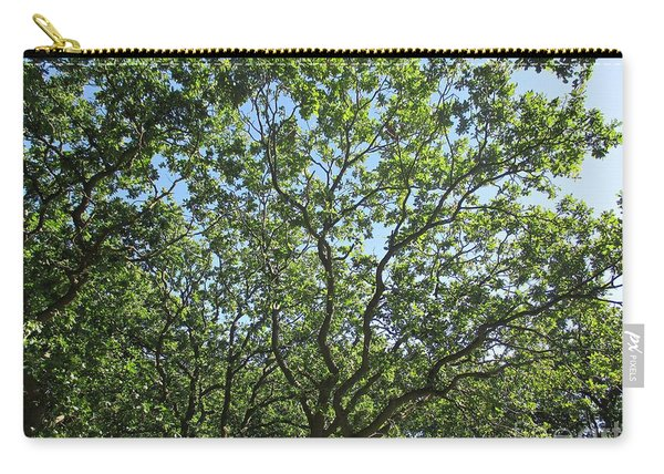 Oaks In The Noordhollandse Duinreservaat Carry-all Pouch