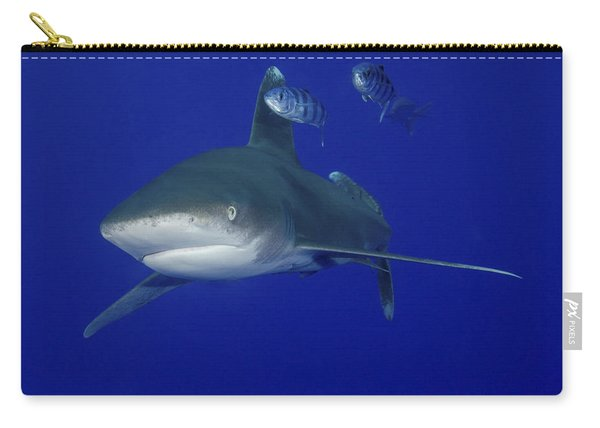 Oceanic Whitetip Shark Swimming Carry-all Pouch