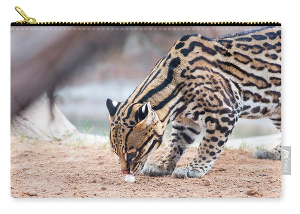 Ocelot And Egg Carry-all Pouch