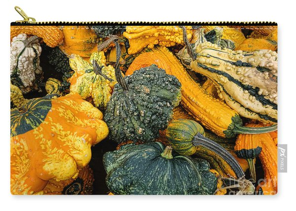 Odd Gourds One Carry-all Pouch