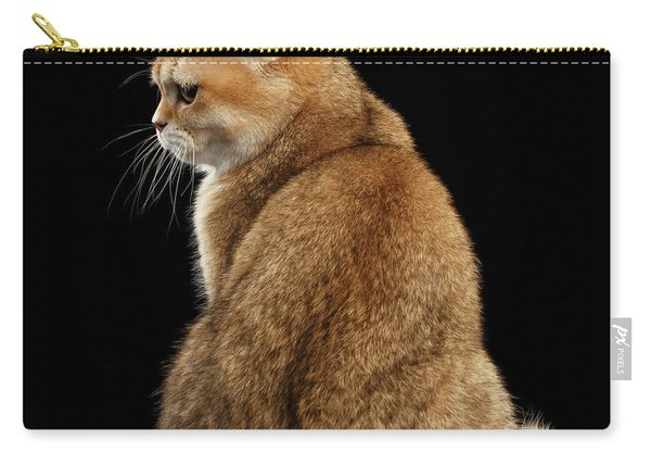 offended British cat Golden color Carry-all Pouch