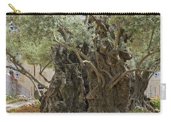 Old Olive Trees Gethsemane Jerusalem Carry-all Pouch
