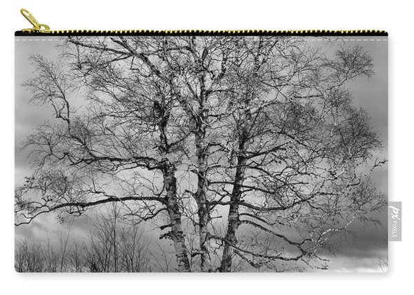 Old White Birch Carry-all Pouch