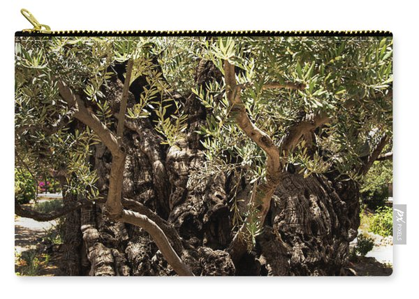 Carry-all Pouch featuring the photograph Olive Tree by Mae Wertz