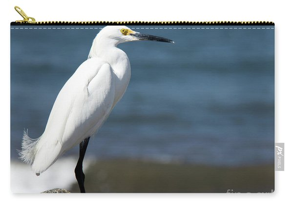One Classy Chic Wildlife Art By Kaylyn Franks Carry-all Pouch