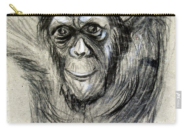 One Of A Kind Original Chimpanzee Monkey Drawing Study Made In Charcoal Carry-all Pouch