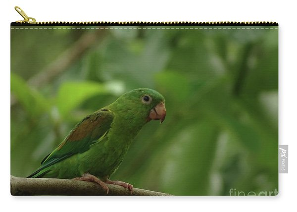 Orange-chinned Parakeet  Carry-all Pouch