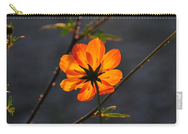 Orange Cosmo Carry-all Pouch