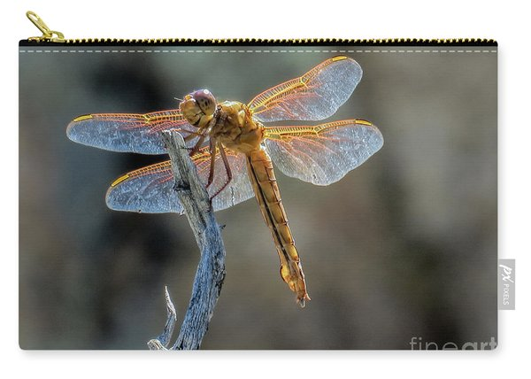 Dragonfly 6 Carry-all Pouch
