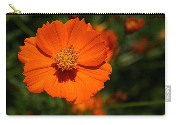 Orange Sulfur Cosmos Flower Carry-all Pouch