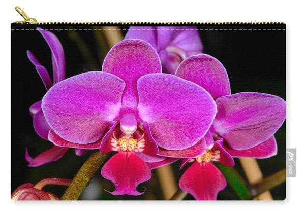 Orchid 422 Carry-all Pouch