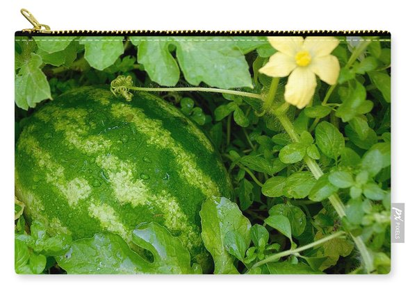 Organic Watermelon Carry-all Pouch