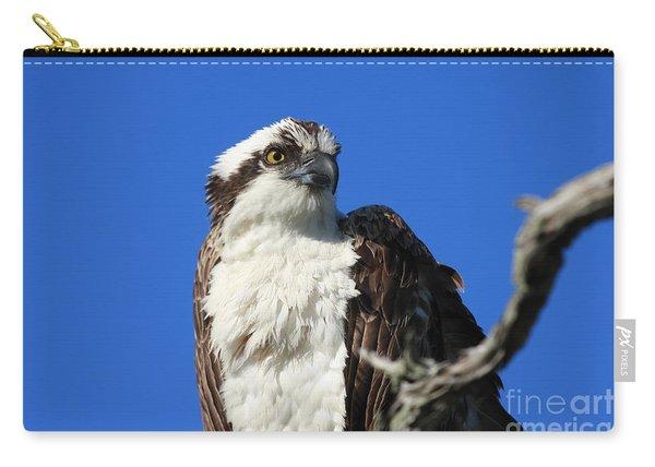Jacksonville Osprey Carry-all Pouch
