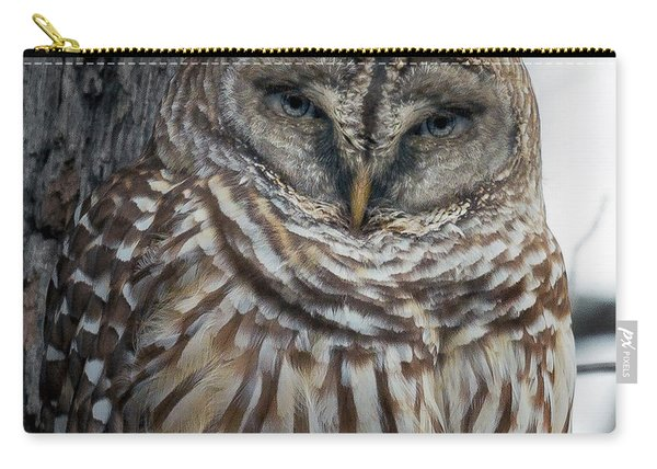 Owl See You Soon Carry-all Pouch