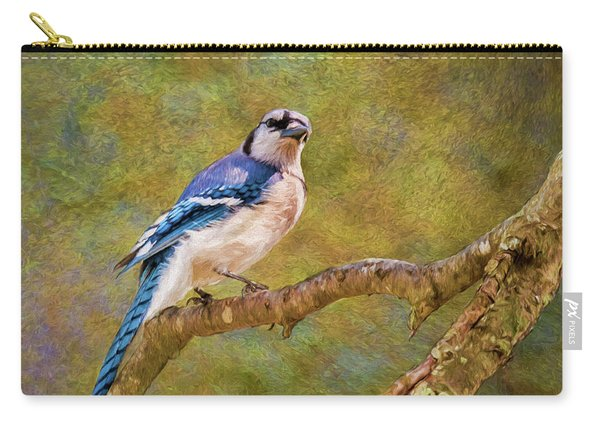 Painted Jay Carry-all Pouch