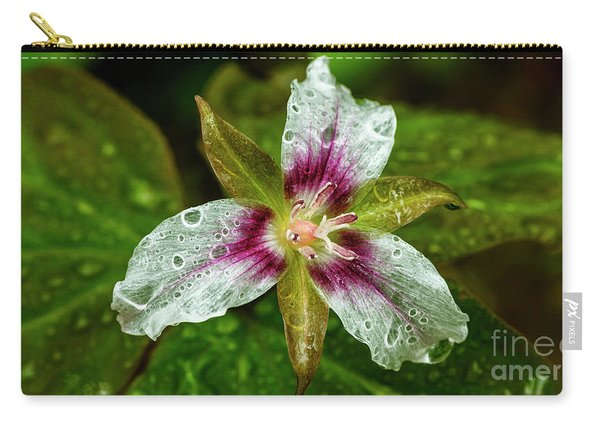 Painted Trillium With Raindrops Carry-all Pouch