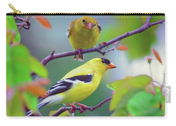 Pair Of Goldfinches Carry-all Pouch