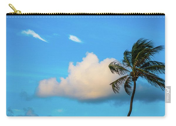 Palm Cloud Delray Beach Florida Carry-all Pouch