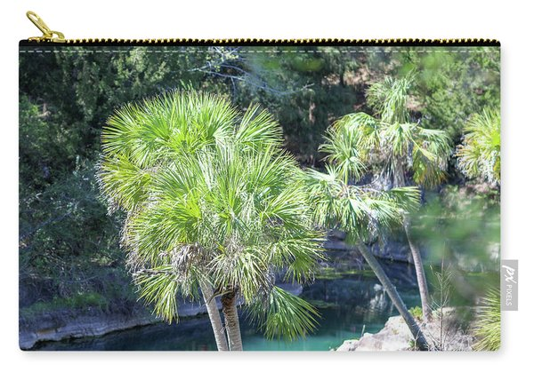 Carry-all Pouch featuring the photograph Palm Tree Blue Pond by Raphael Lopez