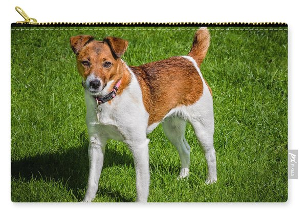 Carry-all Pouch featuring the photograph Parson Jack Russell by Nick Bywater