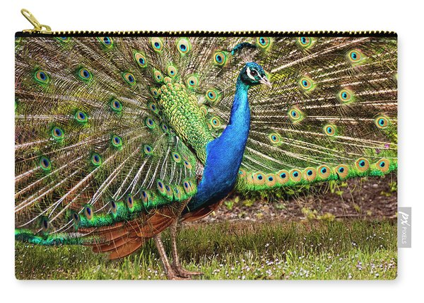 Peacock In Beacon Hill Park Carry-all Pouch