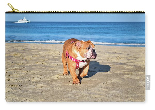 Peanut On The Beach Carry-all Pouch