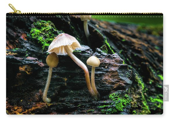 Carry-all Pouch featuring the photograph Peek-a-boo Mushroom by Dennis Dame