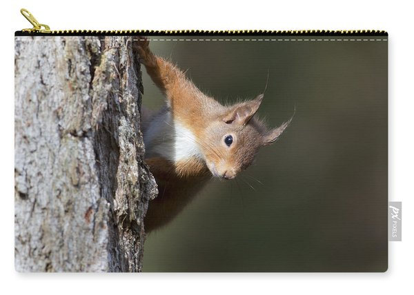 Peekaboo - Red Squirrel #29 Carry-all Pouch