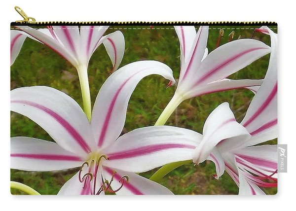Peppermint Lilies Carry-all Pouch