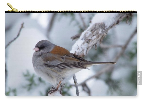 Perched And Pretty Carry-all Pouch