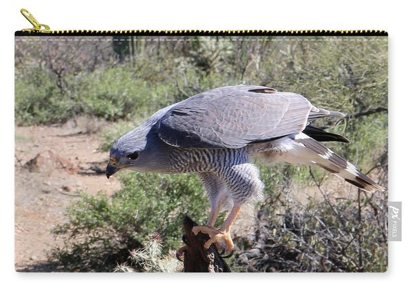 Carry-all Pouch featuring the photograph Peregrine Falcon  by Christy Pooschke