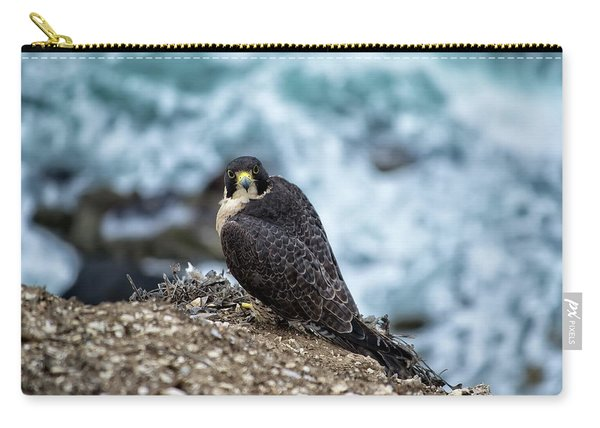 Peregrine Falcon - Here's Looking At You Carry-all Pouch
