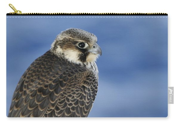 Peregrine Falcon Juvenile Close Up Carry-all Pouch